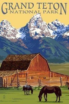 Grand Teton National Park - Barn & Mountains - Lantern Press Poster