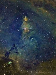"NGC 2264 contains the Christmas Tree Cluster and the Cone Nebula. (They're at the top of the picture.) (Credit: J-P Metasavainio) Mona Evans, ""Christmas in the Skies"" http://www.bellaonline.com/articles/art36154.asp"
