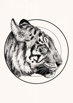 Printed using high quality archival pigment ink and matte archival paper. Inks and paper are manufactured to be used together creating bright, clear and long last prints. Lion Tattoo, Cat Tattoo, Tattoo Drawings, Circle Drawing, Circle Art, Animal Paintings, Animal Drawings, Hatch Art, Lion Flower
