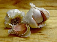 7 Materials to Heal a Wound Naturally