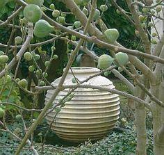 Kretische Amphore als Wasserspiel hinter Feigenbaum