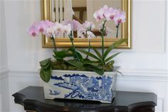 Blue and White Canton Planter Back in Stock : )