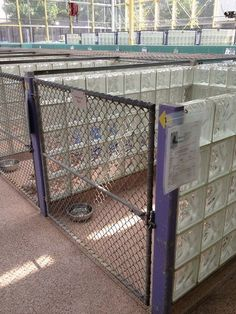Dog and Large Animal Custom Enclosures - masonco I like the glass block dividers For kennels, shelters and boarding facilities these look great