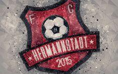 Sibiu Romania, Football Art, Geometric Logo, Desktop Pictures, Gray Background, 1, Symbols, Wallpapers, Club