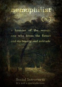 ) Term and definition found on otherwordly. As a girl I played in the woods and felt so at home in my magical, mystical playland!