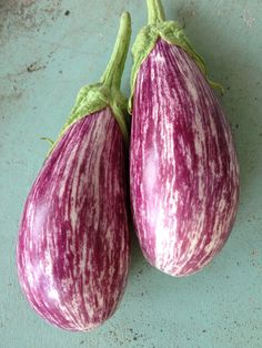 Purple Striped Eggplant Shooting Stars Rare Seeds Grown to Organic Standards Excellent Flavor Eggplant Seeds, Tiny Farm, Persian Cucumber, Plant Labels, Pepper Plants, Backyard Projects, Shooting Stars, Color Of The Year, Raised Beds