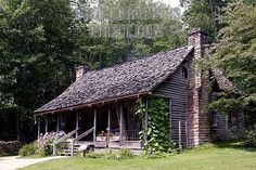 Appalachian cabin with half runner beans growing up the porch in Pisgah National Forest.