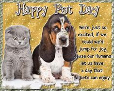 Wish friends a happy Pet Day and remind them to give their fur babies an extra hug. Free online Pet Day Wishes Doggy Style ecards on National Pet Day Happy Animals, Cute Animals, National Pet Day, Jumping For Joy, Day Wishes, Cute Mugs, Love Pet, Name Cards, Mug Shots