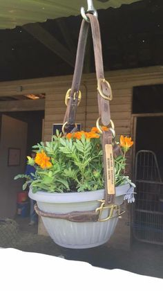 WOW ❤️ Horse head collar hanging basket. Great idea! https://www.facebook.com/horsemaster.tv/photos/a.150573492180.126553.102611707180/10153047780152181/?type=3