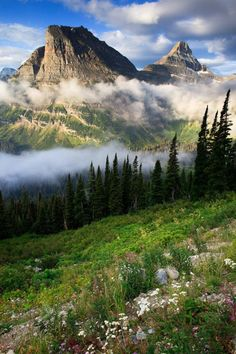 Going to the Sun Highway, Glacier National Park. Truly an experience t… Going to the Sun Highway, Glacier National Park. Truly an experience [. Places Around The World, Around The Worlds, Monument Valley, Magic Places, Parc National, Parcs, Natural Wonders, Beautiful Landscapes, The Great Outdoors
