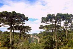 Canyons Itaimbezinho, Cambará do Sul - RS
