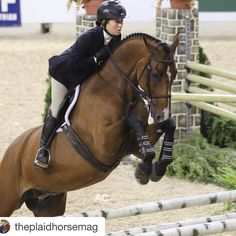 This is such a gorgeous photo from @amycoretz  @core.equine_photography #repost @theplaidhorsemag .  Throwback to the Pennsylvania National horse show! Pictured is Claudia Payor competing in the Pessoa/US Hunt Seat Equitation finals. #finals #pennsylvania #harrisburg #horseshow #equitation #equestrian #hunterjumper #pessoa #medal @pa_nationalhs Photo by intern @amycoretz @core.equine_photography