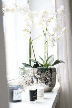 Blumen // Orchidee / Silber / Weiß