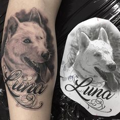Dog portrait tattoo by Nelson.  Limited availability at Redemption Tattoo Studio.