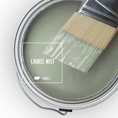 Green Paint Colors, Paint Colors For Home, House Colors, Sage Green Paint, Kitchen Paint Colors, Best Color For Kitchen, Living Room Paint Colours, Colors For Bathroom Walls, Hallway Wall Colors
