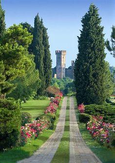 Viale delle Rose, Parco Giardino Sigurtà gardenvisit.com