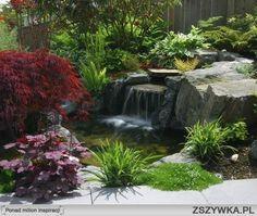 Zobacz zdjęcie mini wodospad w ogrodzie w pełnej rozdzielczości
