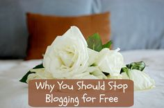 Adaleta Avdic: Why You Should Stop Blogging for Free