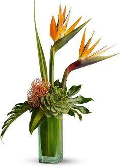 Flowers Toronto : Flower Delivery Toronto : Toronto Florist : Gift Baskets : 4165Flower.com