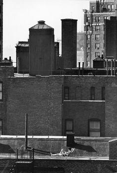 Photo: André Kertész 1964