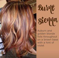 Auburn hair with golden highlights/ fall 2015 hair color