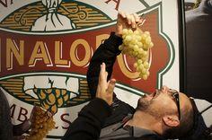 """""""Desde hace muchos años disfruto de la uva del valle del Vinalopó"""" Juan León    #uva #grape #embolsada #vinalopo #spain #alicante #natural"""