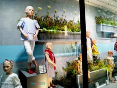 Spring/Summer 2017 season in visual merchandising is green Grafton Street, Retail Windows, Window Ideas, Green Plants, Fall Season, Visual Merchandising, Spring Summer, Seasons, Autumn