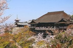 Kiyomizudera•••  Temple famous for its large wooden terrace.