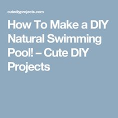 How To Make a DIY Natural Swimming Pool! – Cute DIY Projects
