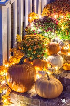 Check out this traditional fall porch decor with mums and pumpkins scattered across the front porch steps -- with twinkle lights as the cherry on top! Outside Fall Decorations, Thanksgiving Decorations Outdoor, Halloween Porch Decorations, Fall Decor Outdoor, Autumn Decorating, Porch Decorating, Decorating Ideas, Decor Ideas, Mums In Pumpkins