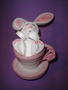 rabbit                                                                                                                                                                                 More