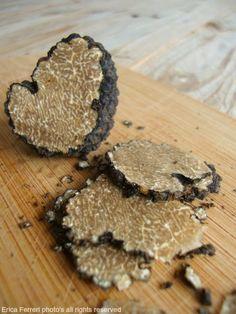 Tartufo nero -  black truffles