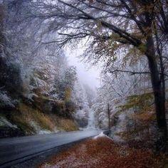 Camino a la sierra nevado