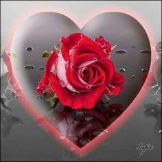 Beautiful Hearts, Love You, Honey, L Love You, I Love You