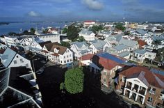 Paramaribo is the capital and largest city of Suriname South American Countries, Countries Of The World, Montevideo, Ecuador, World Geography, Turks And Caicos, Nature Reserve, Central America, Viajes
