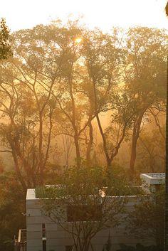 樹也 ChooArt Villa 2