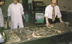 """The Medical Pathology Museum of Tokyo University contains a collection of around 105 preserved human skins tattooed in the traditional Japanese style, including a number of full body suits."""