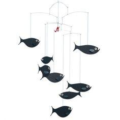 Shoals of fish