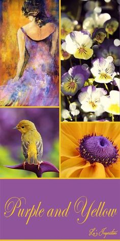Purple and Yellow. So beautiful together - Purple and Yellow. So beautiful together - Color Trends, Color Combos, Paint Color Schemes, Mood Colors, Color Collage, Color Balance, Colour Board, Mellow Yellow, Purple Yellow