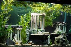 Ancient Fish Tank Decoration Ideas