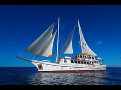 Small Ship Cruises, Sailing Ships, Boat, Youtube, Dinghy, Boats, Youtubers, Sailboat, Youtube Movies