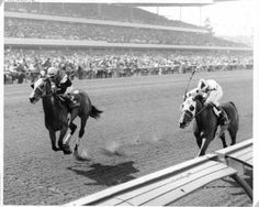 Convenience(1968)Fleet Nasrullah- Moment Of Truth By Matador. 5x5 To Malva. 35 Starts 15 Wins 9 Seconds 4 Thirds. $648,933. Won Vanity H(G1)Twice, Vallejo S, Santa Paula H, Sequoia H, Wilshire H, Santa Maria H.