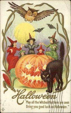Halloween Witches Jack O Lantern Cat Owl c1910 Embossed Postcard