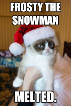 #GrumpyCat #ChristmasMeme For more Grumpy Cat stuff, gifts, and meme visit www.pinterest.com/erikakaisersot
