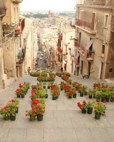 Caltagirone, province of Catania , Sicily- if memory serves me right this is about 50 minutes to an hour from Catania. One can buy the most beautiful tiles in this town- all hand painted.