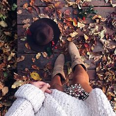 best autumn things : Photo