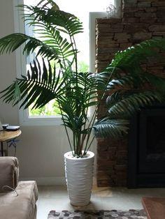 Decoración con plantas. Preparando los ambientes para recibir la primavera #JulietaPisani #DecoDesign