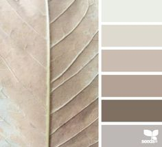 Shades of grey and taupe colour pallette, color palate, taupe color schemes, taupe Design Seeds, Colour Pallette, Color Combos, Neutral Palette, Brown Colour Palette, Color Palate, Wall Colors, House Colors, Room Color Schemes