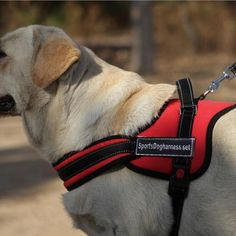 Large Dog Walk Out Harness     Tag a friend who would love this!     FREE Shipping Worldwide     Buy one here---> https://sheebapets.com/dog-harness-big-dog-soft-padded-adjustable-pet-large-dog-walk-large-dog-harness-small-s-m-l-xl-pet-products-supply/