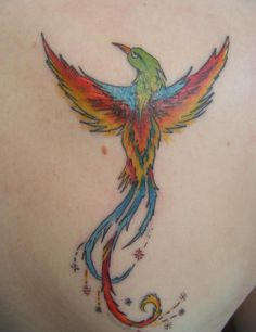 This is my first tattoo, it's on my right shoulder blade and I got it about a week ago at Gravity Tattoos by Richard, I had the best experience for getting it and will go to him for my next one. I got this Phoenix because of what it stands for. To pick yourself up when you get knocked down. No one can make you strong you have to learn and do it yourself. It also symbolises the hard times I have been through and I've turned them into inspiration for the hard times that lay ahead.